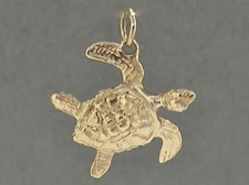 Gold Sea Turtle