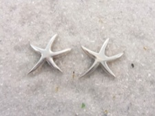 Starfish Posts