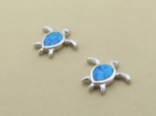 Opal Turtle Posts