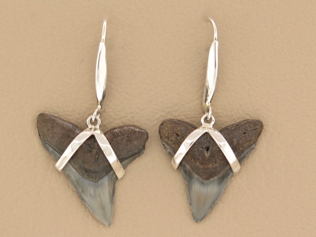 Shark Tooth Earrings - Click Image to Close