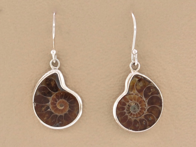 Ammonite Earrings - Click Image to Close