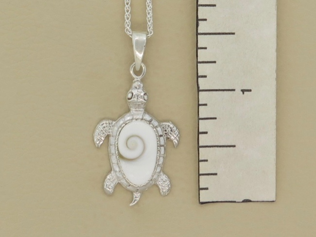 Siwa Shell Turtle - Click Image to Close