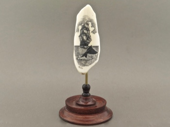 Fossil Walrus Tooth Scrimshaw Whale's Tail